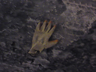 lost gloves 1/3