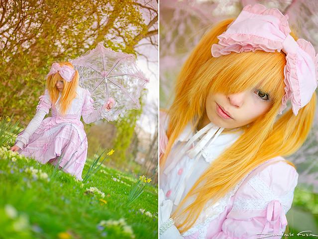 The pink princess of Spring