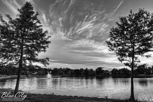 trees sunset sky water landscape blackwhite texas tx lakejackson brazoriacounty shypond bluecityphotography bluecityphotographycom