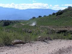 Here comes the bus - Ya viene el autobus; camino entre Ameca y San Rafael de las Tablas; Zacatecas, Mexico