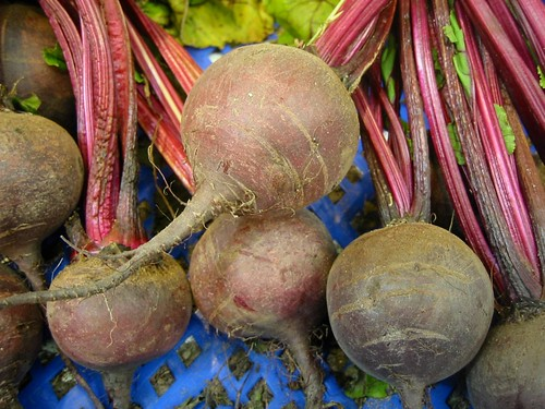 Red beet (Beta vulgaris L.) | by Dag Endresen