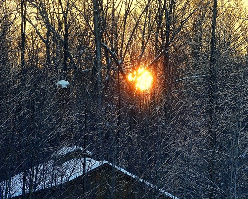 winter ohio cleveland beautifullight kirtland holdenarboretum lowmorningsun awintermorning seenfromsperryroad sunriseoversugarbush