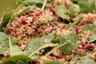 Buckwheat and salmon salad with baby spinach | by Gudlyf