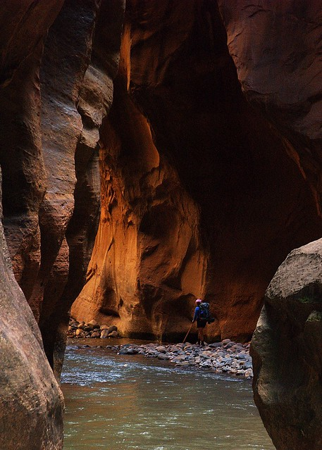 Hiking through the Zion Narrows, Zion National Park