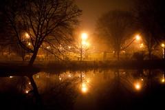 Thanksgiving Fog - Albany, NY - 09, Nov - 11 by sebastien.barre