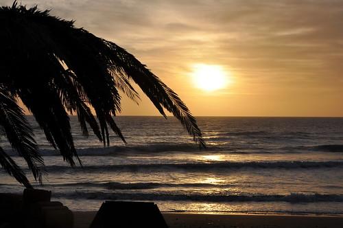 sunset sea tramonto mare palm palma sicilia kartibubbo granitola