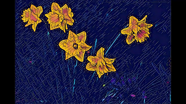 Daffodils, as seen through Prisma and Vinci filters. (Slideshow)