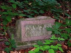 Pet Cemetery2