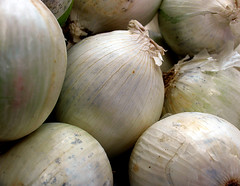 Cebolas Cebollas Cipolle Løker Oignons Onions Uien Zwiebeln | by Esteban Cavrico