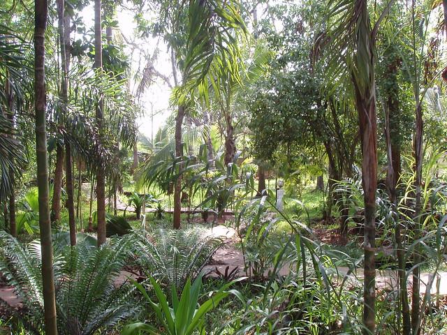 Kenia 2010 236