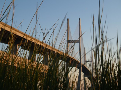 bridge grass georgia brunswick sidney lanier bugseyeview sidneylanier sidneylanierbridge bugeyeview