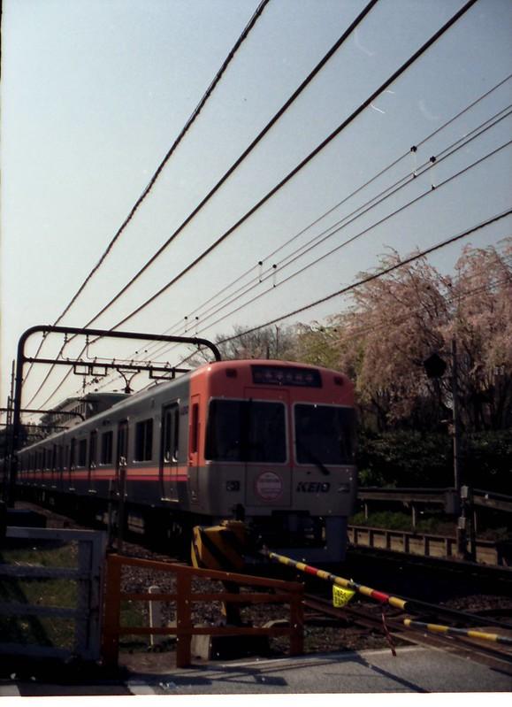 さくら色電車 by Noël Café