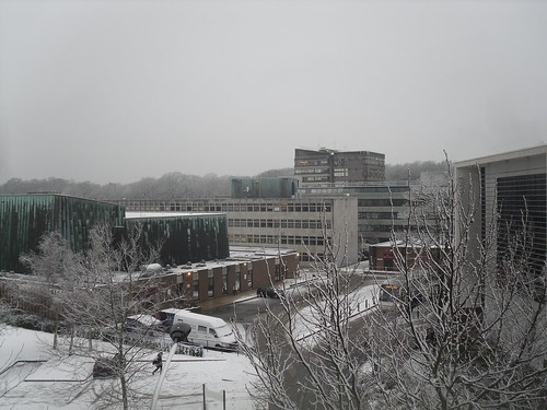 Southampton University in the Snow