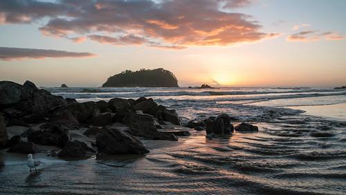 sea newzealand seascape sunrise nikon rocks waves nz northisland tauranga bayofplenty mountmaunganui nikond90 mountmaunganuibeach