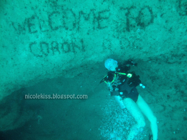 Volcanic Lake Thermocline Dive In Coron Palawan Philippi