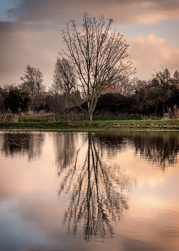 winter sunset sky reflection tree andy water thames clouds river still mood afternoon sony culham hough andyhough slta77
