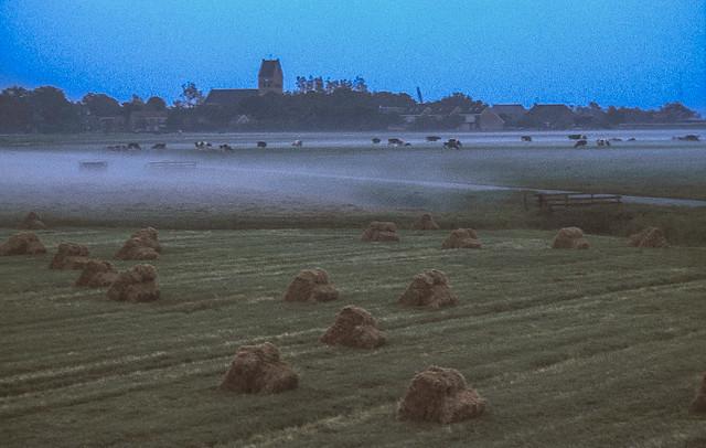 Hay stacks in Mist