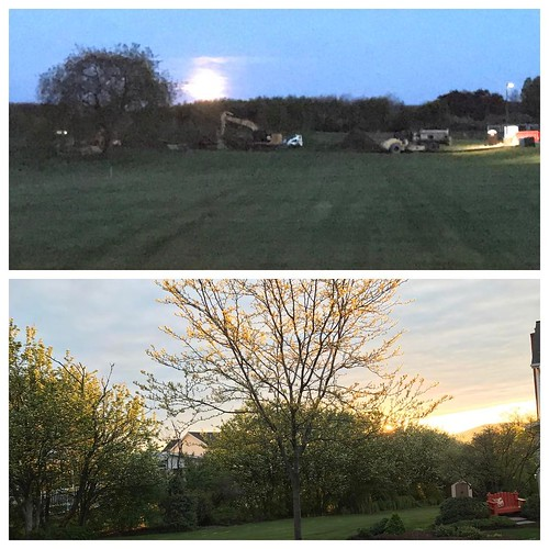 Beauty from start to finish of my run:  top is the huge moon setting (looks brighter than it was at 4:30AM!), bottom is the sunrise as I was finishing up.  So much beauty and joy and love all around us ... we just need to reach out and grab it! | by txa1265