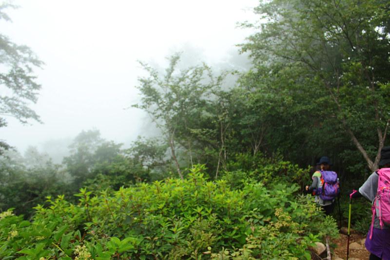 荒島岳_55