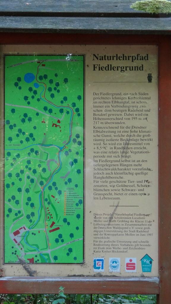 Am Naturlehrpfad Fiedlergrund Dresden sehe Ich dieses Elendes keinen Schlusspunkt als die Grabstätte. Im Halbdunkel des benachbarten Eichenwaldes breiten verliebte Paare oder Familien die Picknickdecken aus 0244