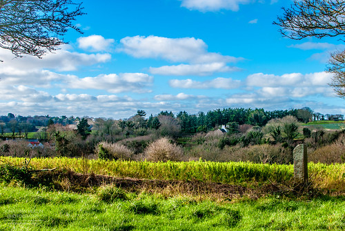 sky green nature countryside nikon stlawrence jersey fields channelislands d3000
