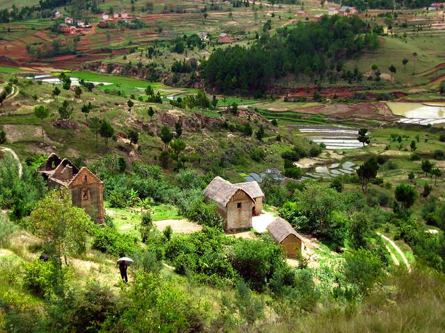 Madagascar1 - 58