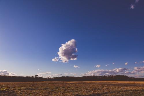 april minnesota wildriver wildriverstatepark clouds field goldenhour spring statepark sunset northbranch unitedstates us wmc1830