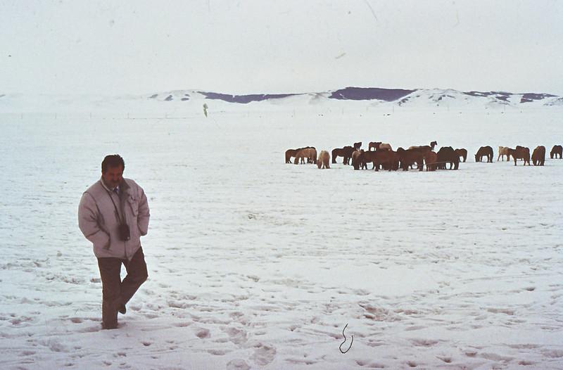 MONGOLIA 1994 01-0012