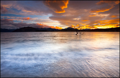wanaka southisland south island lake newzealand new zealand otago otagonz sunrise dawn waves longexposure tripod gndfilter polariser canon 5d 1740mm tree thatwanakatree