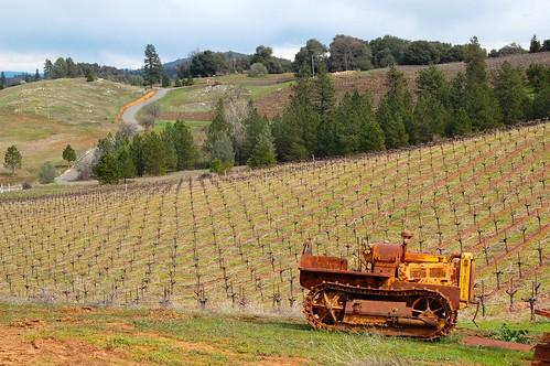 winter vineyards winetasting bulldozer amadorcounty