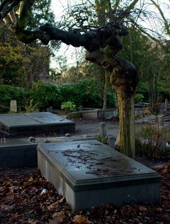 Begraafplaats Zorgvlied | by Nikodem Nijaki