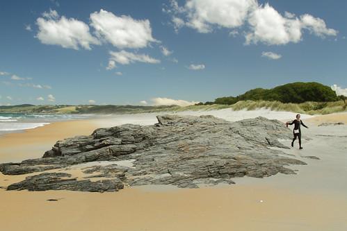 newzealand southisland 2016 catlins coast