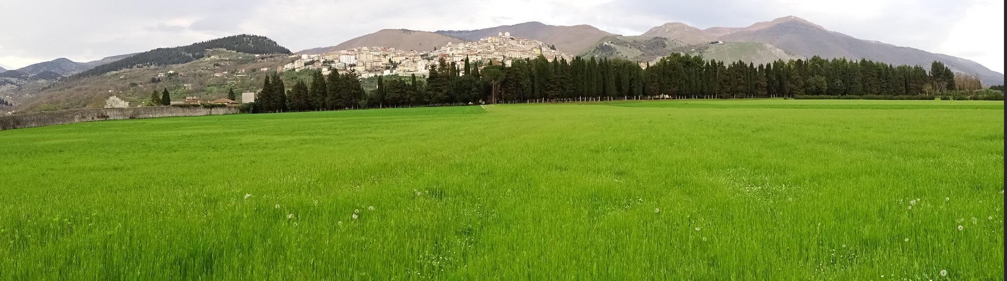 Parco Certosa di San Lorenzo