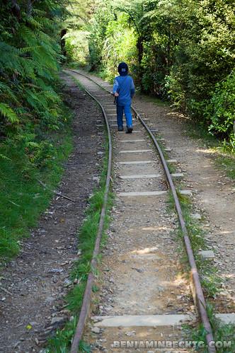 Railway at Karangahake Gorge | by Benjamin Beck