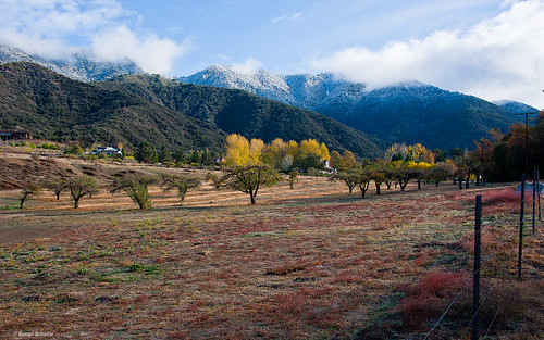 california autumn trees houses snow mountains fall landscape fences fields apples coulds orchards oakglen appleorchards