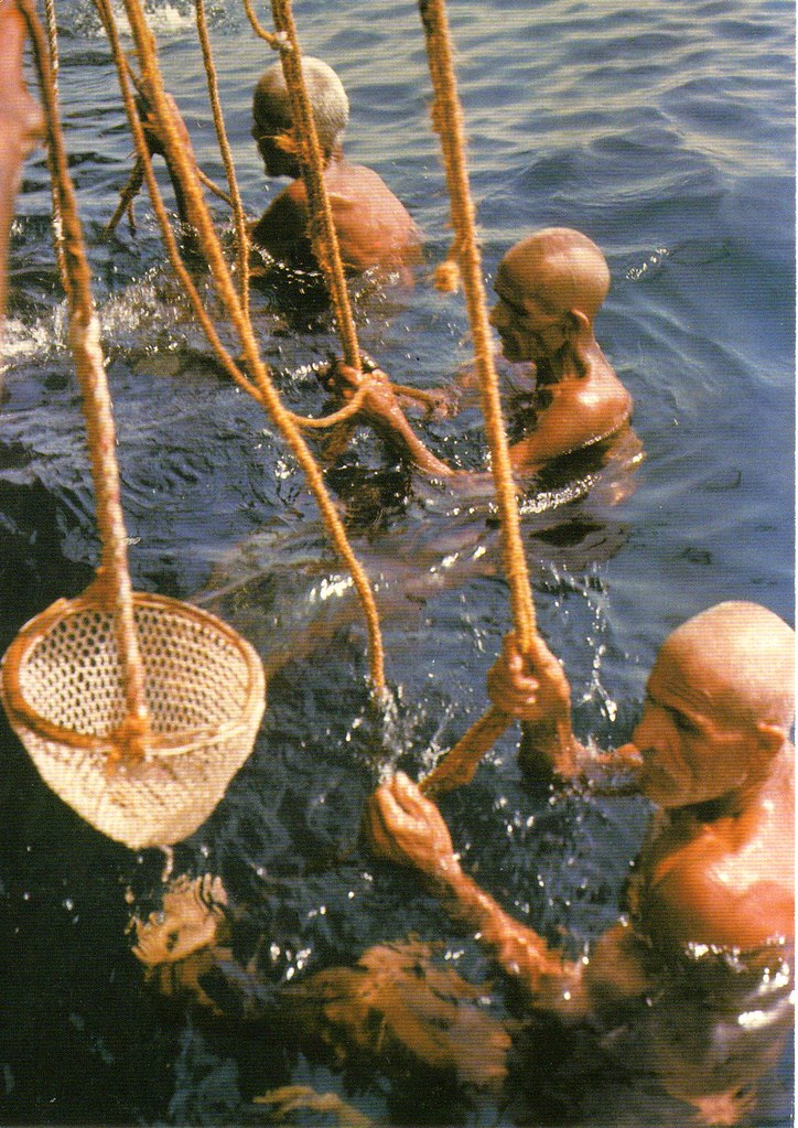 Pearling - Bahrain | Pearling Testimony of an Island Economy