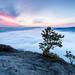 foggy sunrise by eos_mg