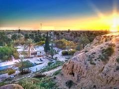 Sunset on #Gabes • #new #tunisia #tunisie #sky_painters #sunpics #sky_collection #sunsetlovers #sunsets #sky_perfection #skyperfection #sunsets_capture #sunset #breathtaking #skyonfire #love_natura #landscape_captures #landscape_lovers #landscape_perfect