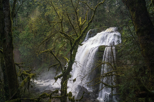 littemashelfalls middlefalls littlemashelmiddlefalls washingtonstate landscape waterfall richborder sonya77 horsetailfalls moss green trees lichen littlemashelriver river forest