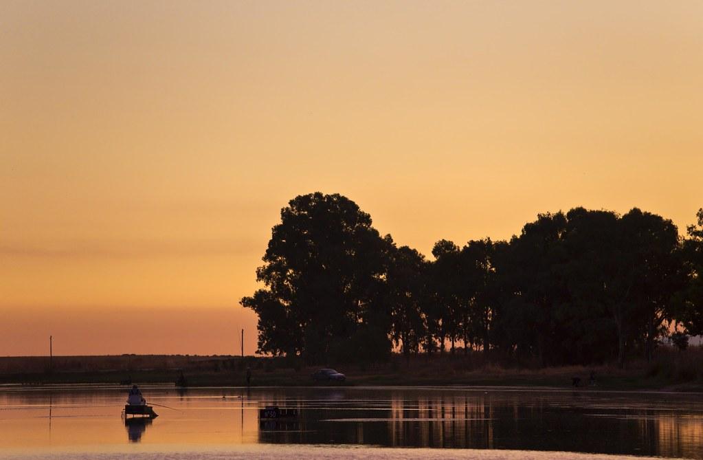 Pescando tencas al amanecer