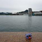 Shellder in Sasebo, Nagasaki 1 (Port Sasebo ferry terminal)