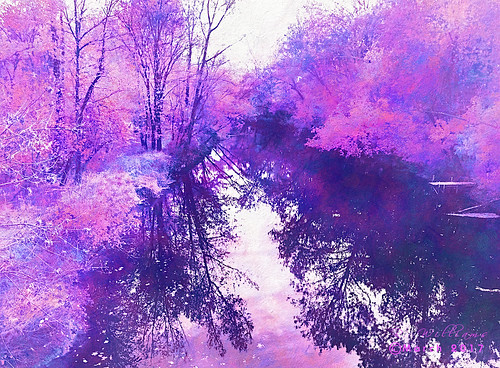 blossom etehreal spring watercolor pastel threes water digitalpainting iphone iphone5s photograph landscape waterscape