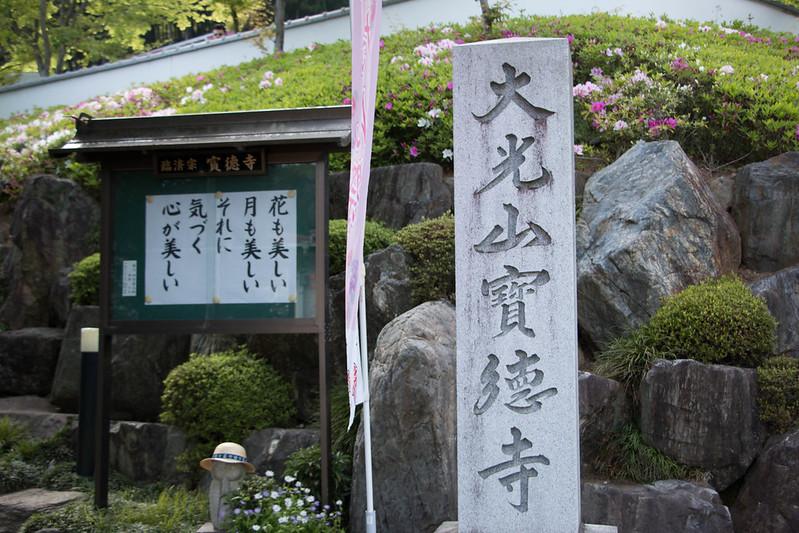 宝徳寺のぼたん祭り