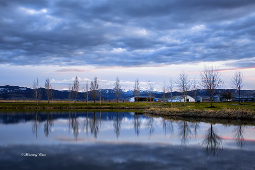 landscape landscapes outdoors water reflections trees clouds nature bozeman montana usa sunset sky barn structure farm farmland lake elkgrove mountains blues momentsbyceline