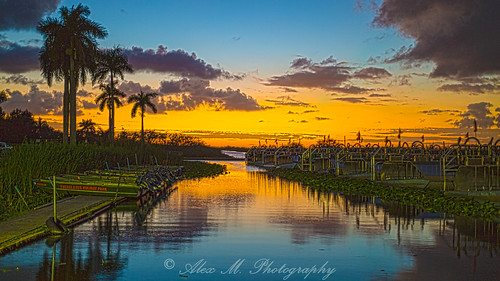 sunrisesunset southflorida floridaeverglades evergladesholidaypark sunset scenery