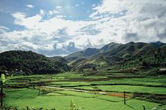 Verdant Valley, Lai Châu Vietnam