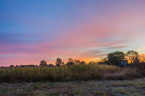 morning ohio sky sunrise cornfield frost unitedstates farm hdr columbiana