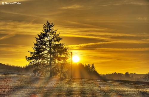 sonnenuntergang sunset sonne sun natur nature baum