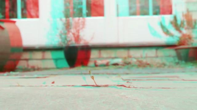 Blackbird - 3d movie clip - anaglyph