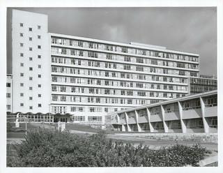 National Womens Hospital. Auckland